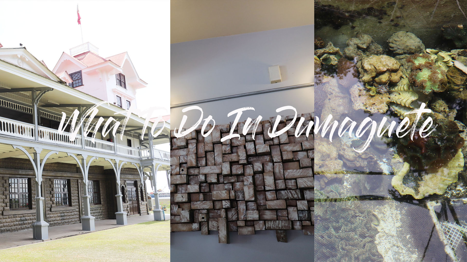 16 Hours In Dumaguete: Things To Do, Eat & See!