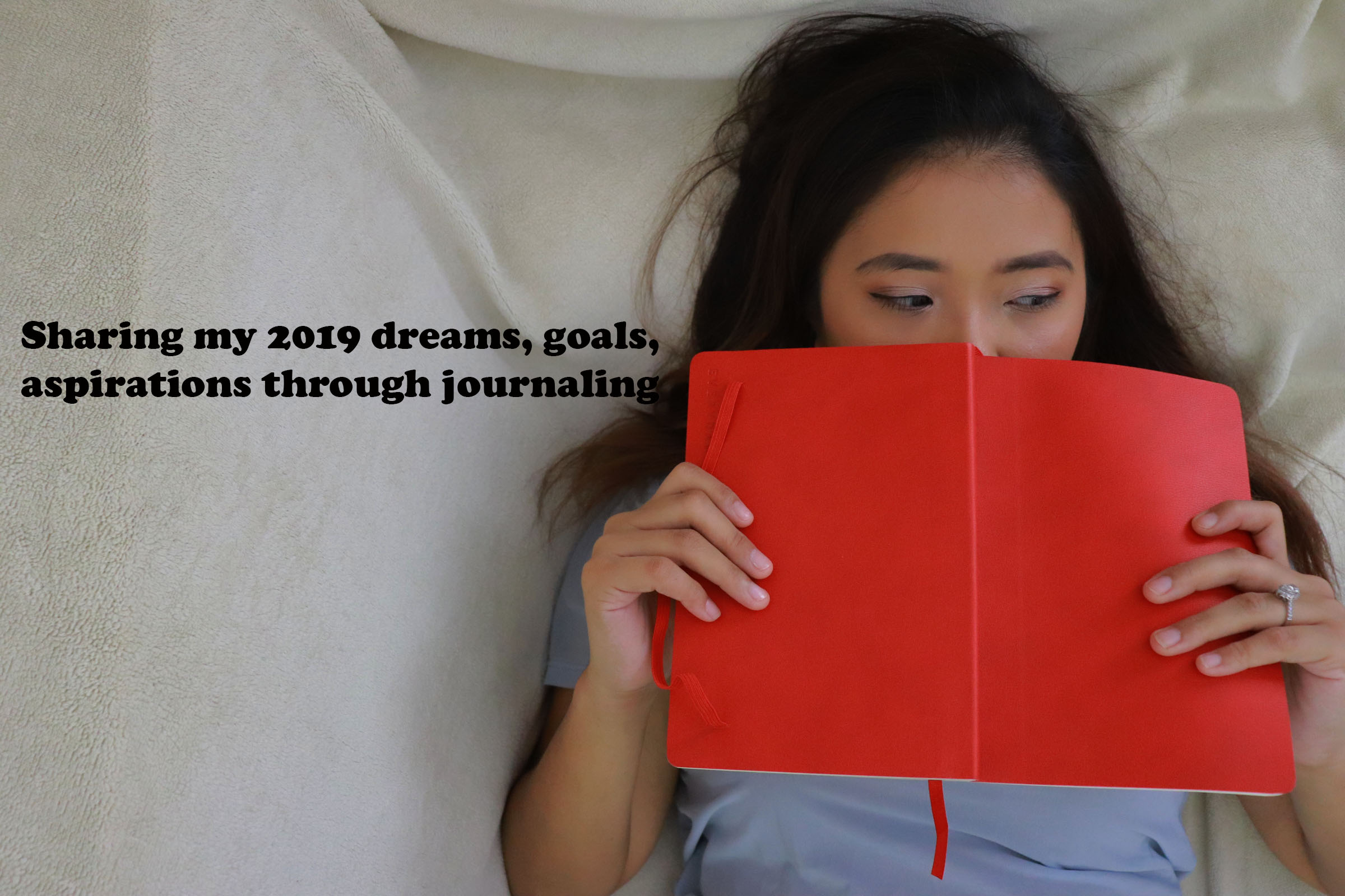 My 2019 Dreams, Goals & Aspirations ft. The Everyday by Penelope Pop