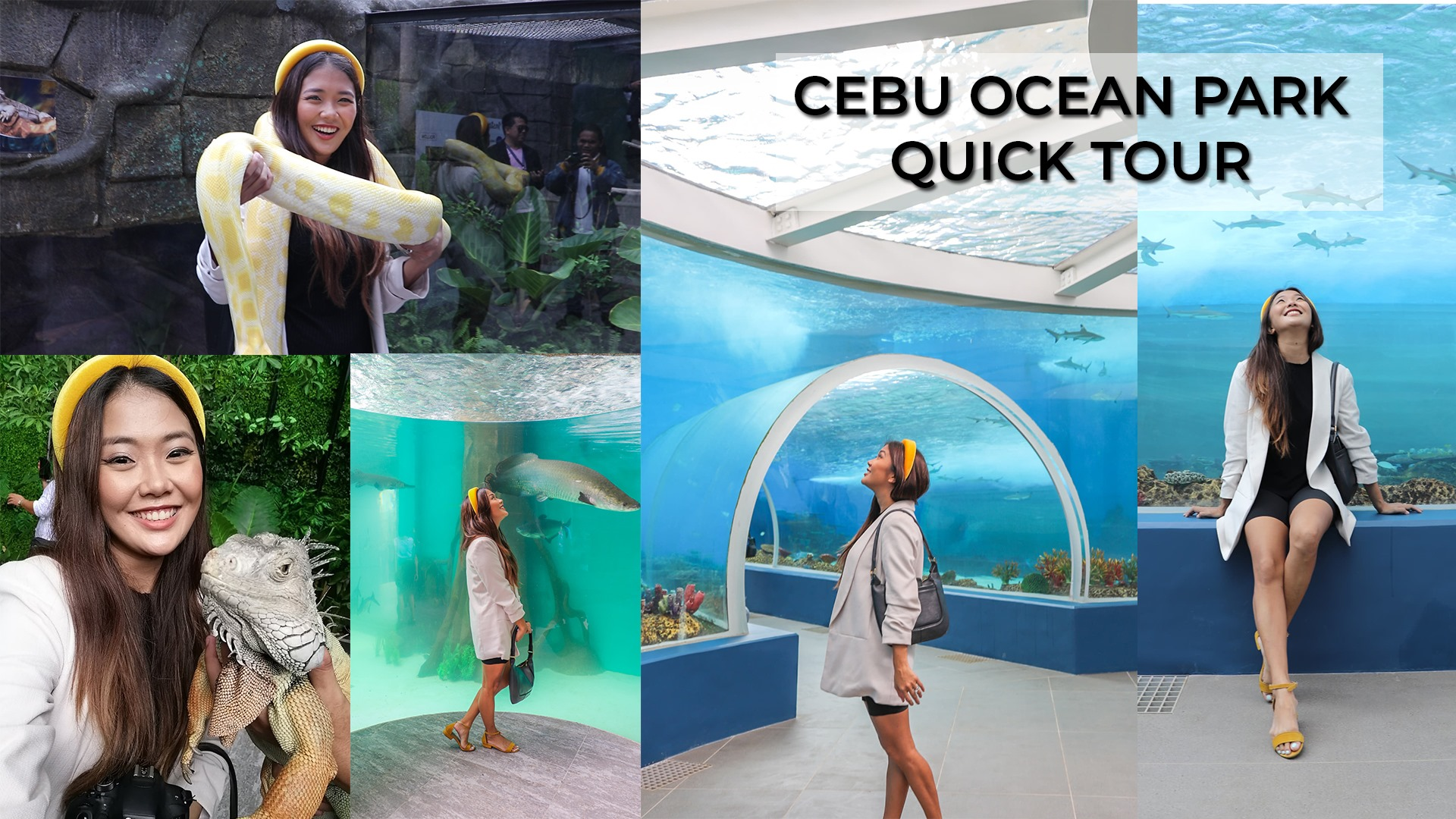 [VLOG/ BLOG] Cebu Ocean Park- Everything You Need To Know- Prices, Attractions, Interactions, Etc.