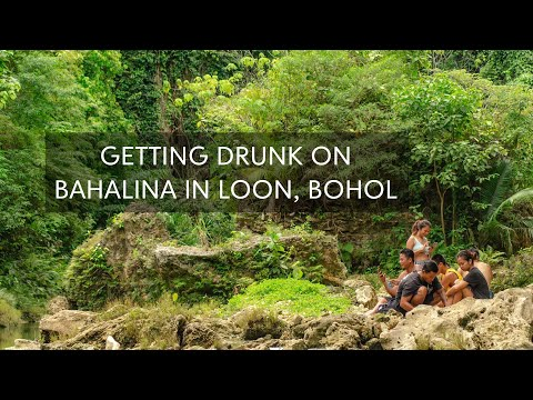 GETTING DRUNK ON BAHALINA IN LOON, BOHOL
